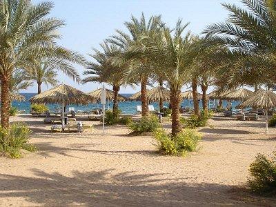Sharm El Sheikh pláž (nahrál: lukáš )