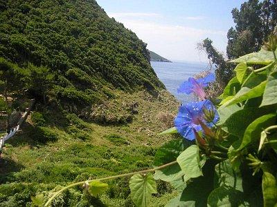 Korfu  - Liapades červen 2008 (nahrál: Jiří Skoupý)
