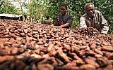 Čokoládová země bez čokolády