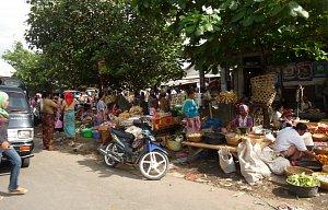 Lombok 2010 - výlety/pláže/příroda