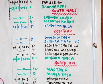Maledivy Leden 2013  (Dive Safari + LUX* Maledives)